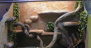 Teriárium pro hada